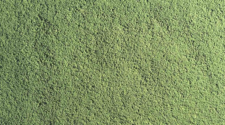 Pigmento colorante verde